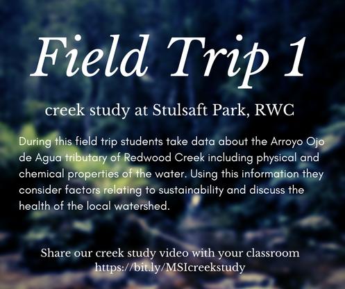Field Trip Creek Study