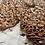 Thumbnail: Pecan Florentines