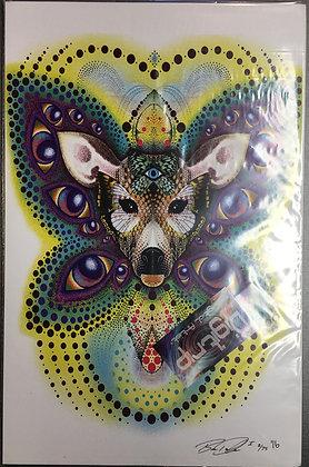 """ButterflEYES"" 11x17 Print"