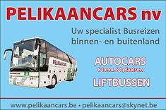pelikaancars.png