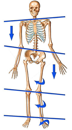How your foot can cause low back or neck pain