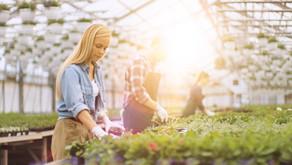 Exploitation agricole: gérer son équipe