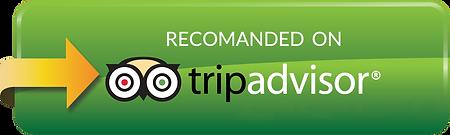 tripadvisor-large.png