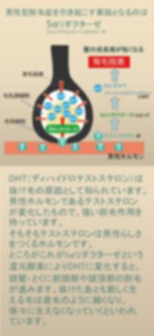 大阪大東住道・発毛・育毛・アンチエイジング・ヘアグロース