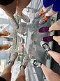 sears tower feet.jpg