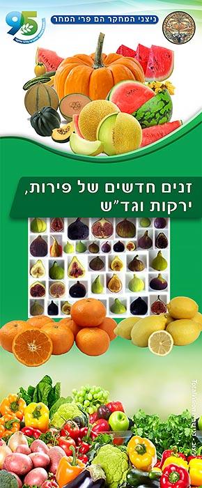 צוב רול אפ זנים חדשים של פירות