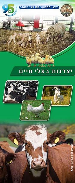 עיצוב רול אפ יצרנות בעלי חיים