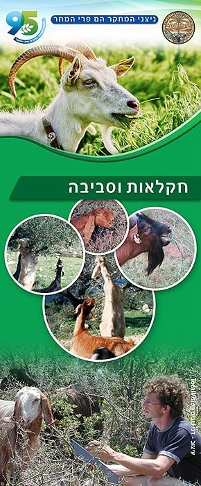 הכנת רול אפ חקלאות וסביבה