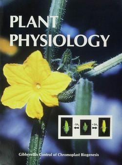 Plant Physiology עיצוב שער למאמר ב