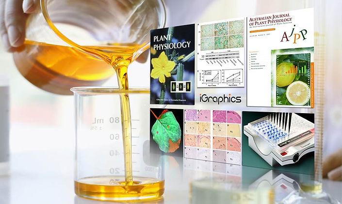 פרסומים-מדעיים-V3-.jpg