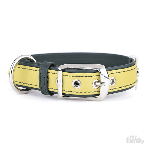 FIRENZE COLLAR LIME LEATHER WHITE BRONZE FINISHING