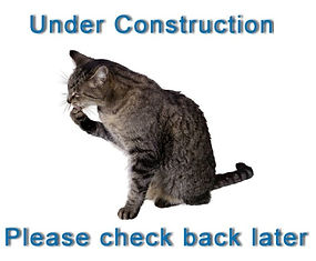 Under_Construction_Cat.jpg