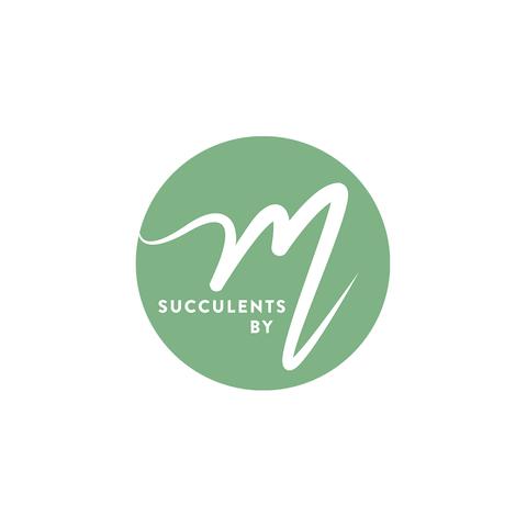 Succulents by M