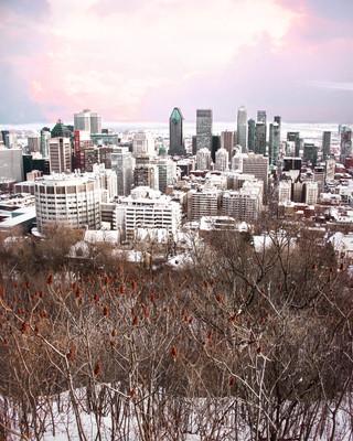 CityscapeLowQ.jpg