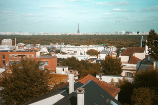 ParisCityScape.JPG
