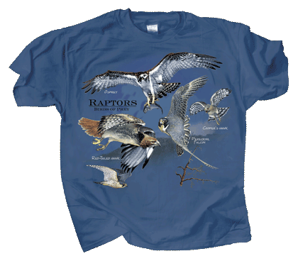 WC271-Birds-of-Prey-tee
