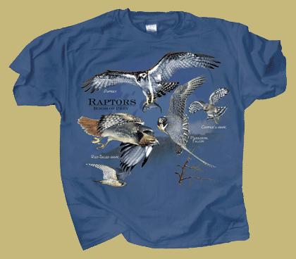 WC271-Birds-of-Prey-tee