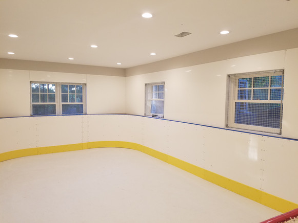 Indoor Synthetic Rink