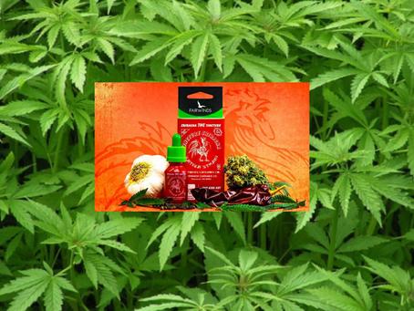 Uso de cannabis no setor de alimentos