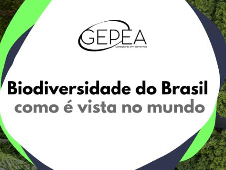 Biodiversidade do Brasil: como é vista no mundo