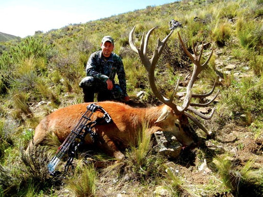Mendoza adventure. Red stag, fallow and wild boar on hilly terrain.