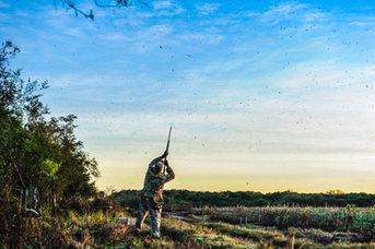 DSC_2644Argentina.hunting.trip.comArgent