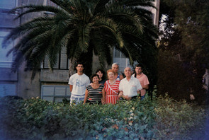 Small_family_bushes_pressed_together.jpg
