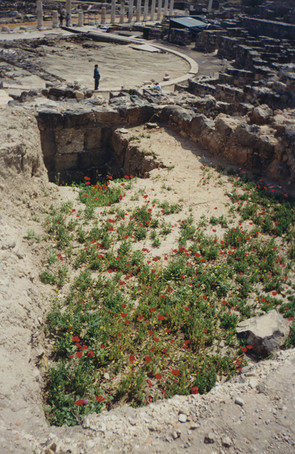 Small_woman_landscape_waman_red_flowers..jpg