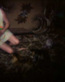 Anna Yam, Dust Works, Untitled 2007, 45