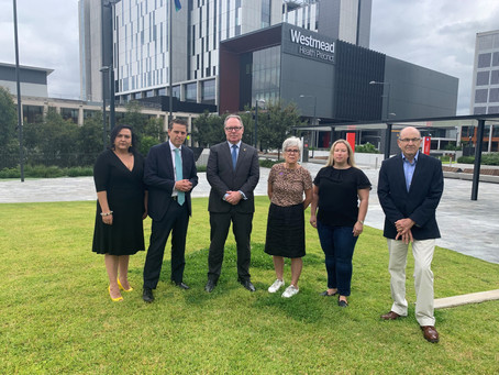 NSW Labor calls for dedicated palliative care ward at Westmead Hospital