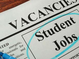 Trabalhar na Nova Zelândia (2021): Guia Completo para Estudantes