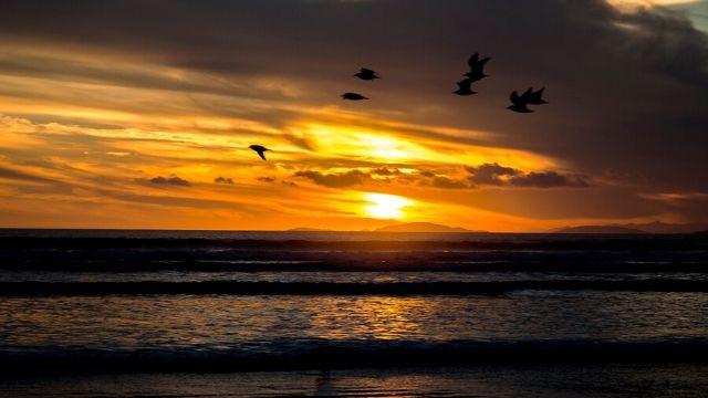 Oreti Beach Invercargill