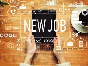 Trabalhar na Nova Zelândia (2021): Guia Completo