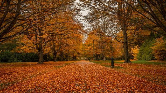 Queens Park Invercargill