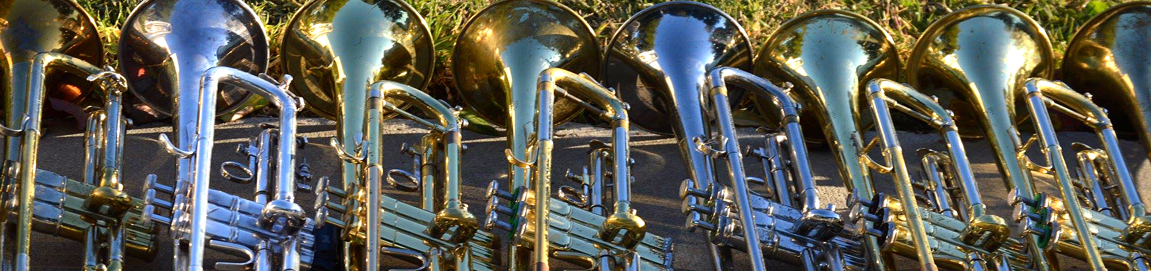 Trumpets2_Banner_2016