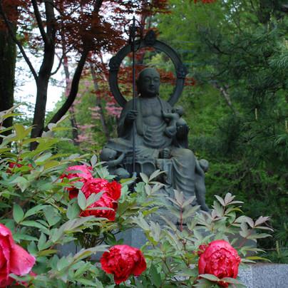 牡丹|水子子育て地蔵と牡丹 東京・八王子市 真言宗 玉泉寺