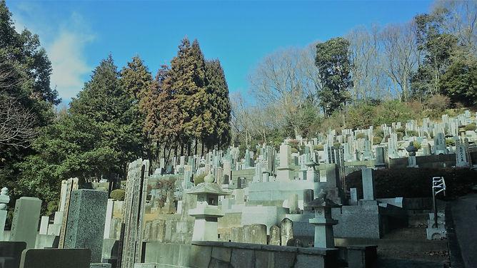 玉泉寺境内墓地冬晴れ.jpg