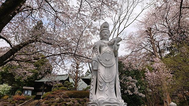 玉泉寺 みまもり観音.JPG