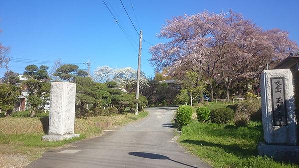 公道から玉泉寺境内への入り口風景.JPG