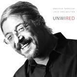 AS SIDEMAN: Unwired (2017)