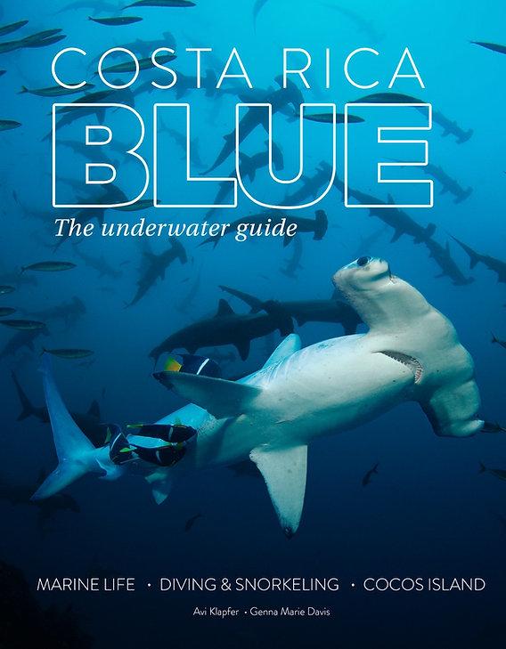 Costa Rica Blue