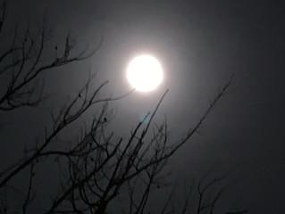 スノームーン乙女座満月からの3択メッセージ