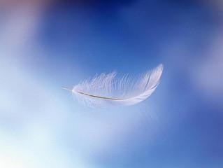 天使からのメッセージを見つけよう