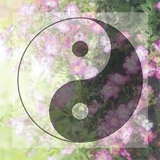 双子座の新月があなたに贈るギフト3択メッセージ