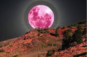 満月だから放り投げよう