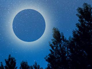 しし座新月で新しい周期のスタート