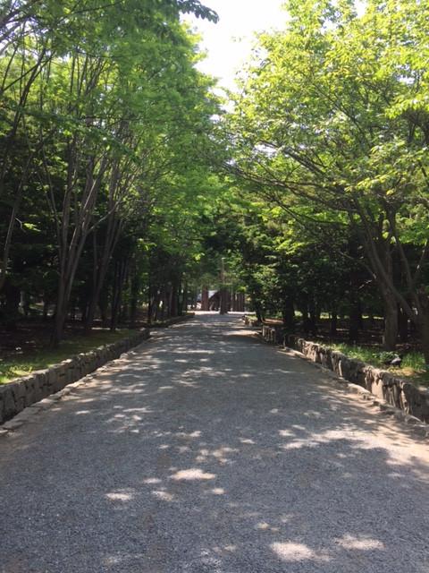 開拓神社6.JPG