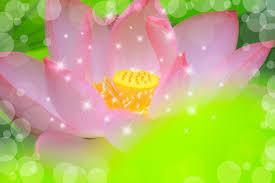 「大いなる愛」と繋がる瞑想