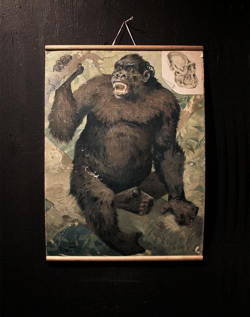 Poster  | ポスター 190152