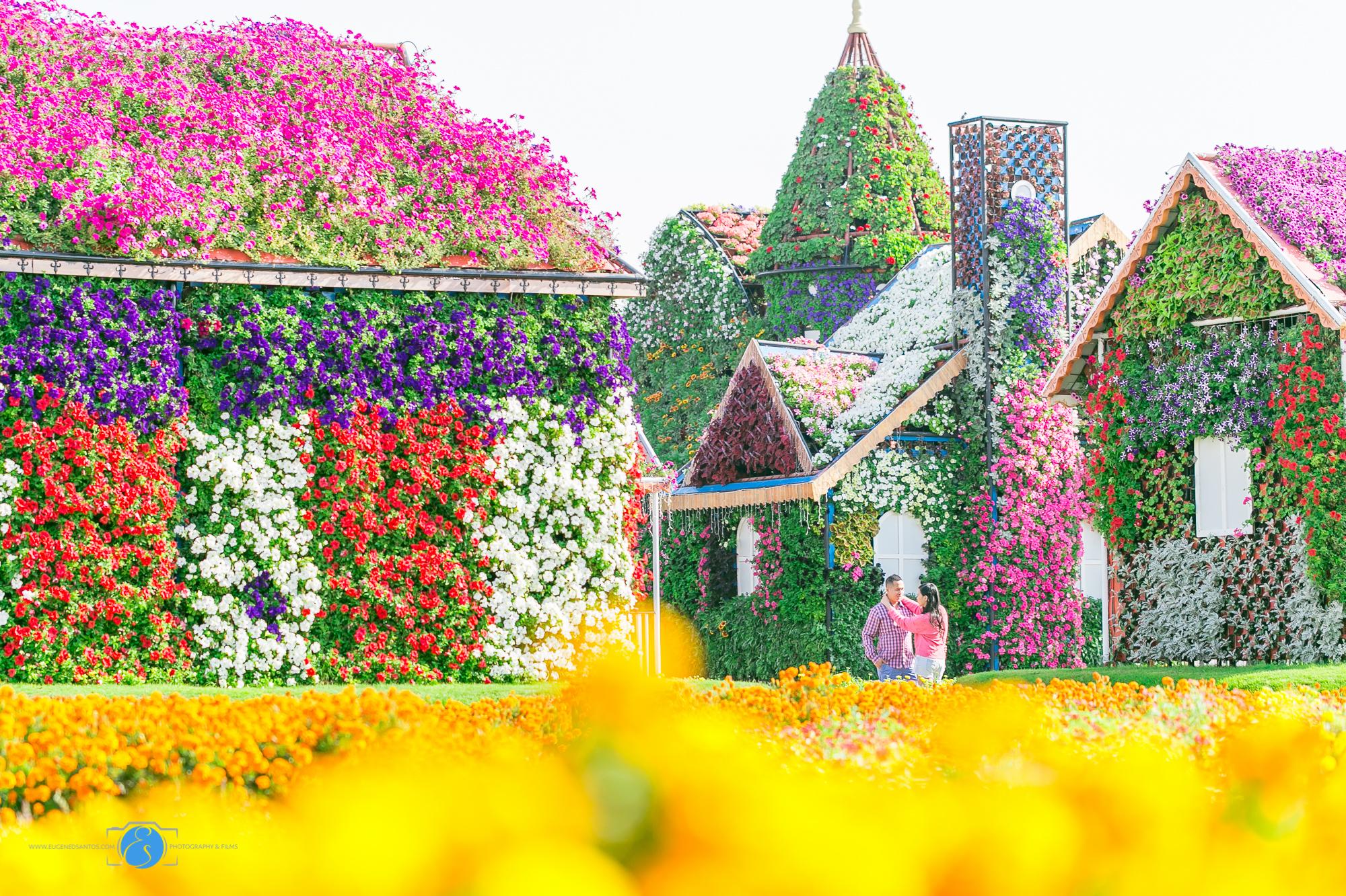 Miracle Garden Prenup Dubai-9652.jpg